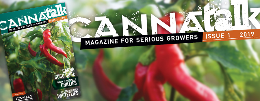CANNAtalk Issue 1