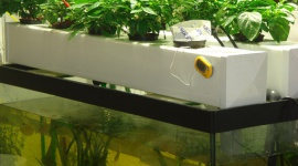 Growing with aquaponics