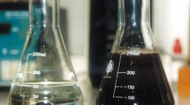 Measuring coco with extraction method